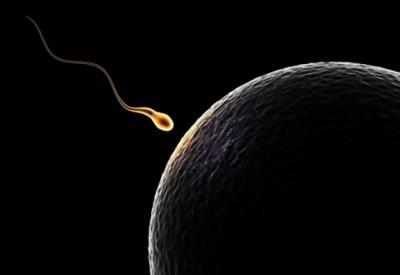 infertile male blog